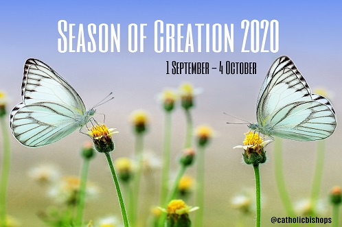 season-of-creation-butterfly_w498