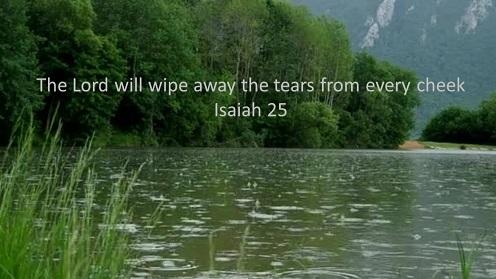 tears_b_w496_279